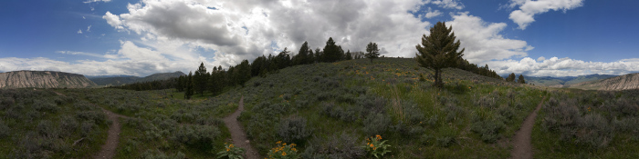 360 degrees panorama of the Beaver Pond Trail in the Grand Teton National Park, Wyoming,m USA